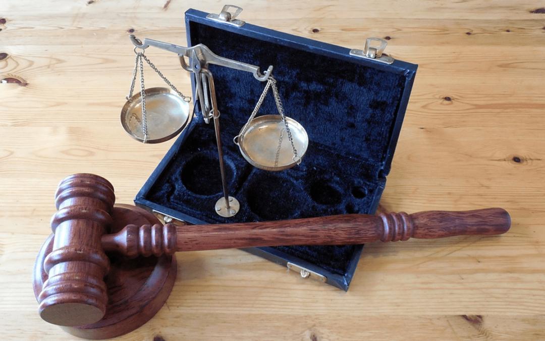 ¿Qué es un procurador enpolítica?